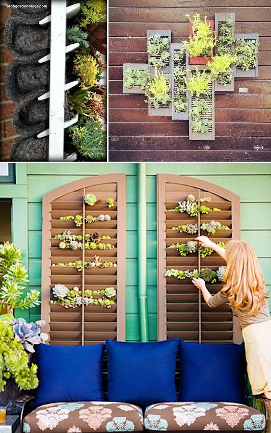 decorar jardin reciclando ventanas