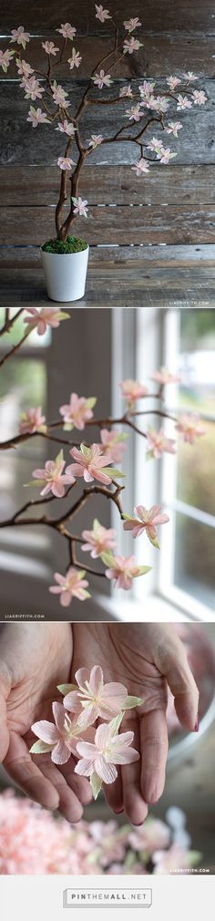 Crepe Paper Cherry Blossom Branches - Lia Griffith: