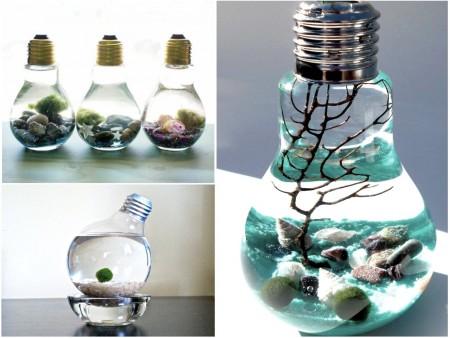 Acuarios con bombillas recicladas