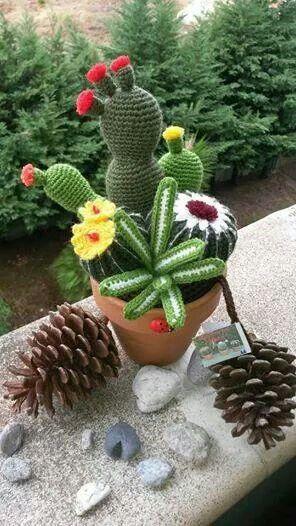 cactus de ganchillo amigurumi