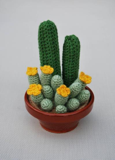 cactus hechos de ganchillo