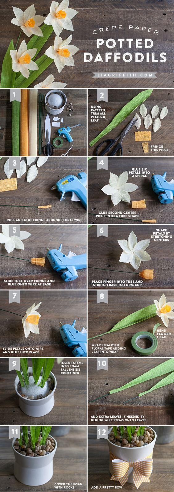 narcisos de papel