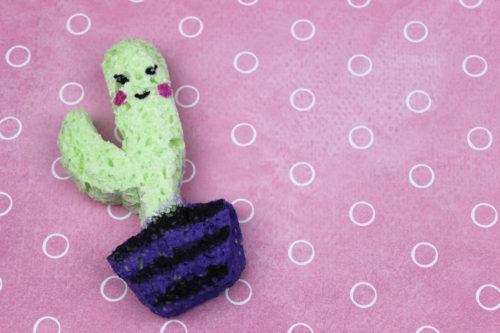 cactus de squishy
