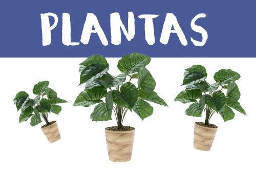 Manualidades con plantas
