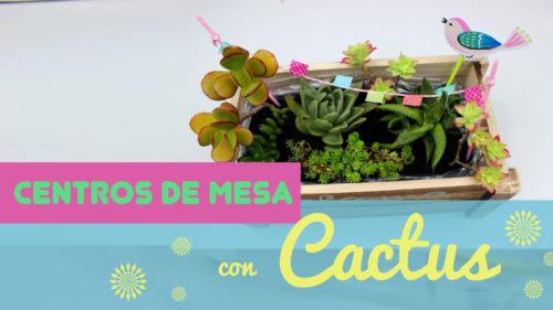 centro de mesa con cactus y suculentas