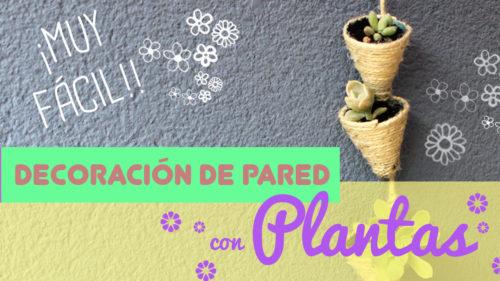manualidades con plantas colgantes