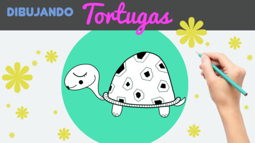Aprender a dibujar una tortuga